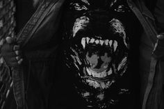 Givenchy Rottweiler