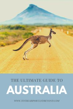 Australia – To The Airport…And Beyond Coast Australia, Visit Australia, Sydney Australia, Brisbane River, East Coast Travel, Cultural Capital, Famous Beaches, Mission Beach, Airlie Beach