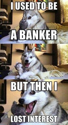 15 Animals Telling The Funniest Dad Jokes - Funny Husky Meme - Funny Husky Quote - 15 Animals Telling The Funniest Dad Jokes I Can Has Cheezburger? Husky Humor, Funny Husky Meme, Funny Dog Jokes, Dog Quotes Funny, Crazy Funny Memes, Really Funny Memes, Funny Relatable Memes, Dad Jokes, Pun Husky