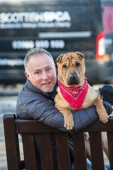 Dog abandoned at Scottish train station with his suitcase adopted