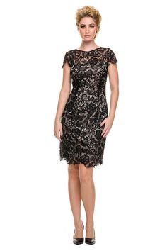 Vintage Lace Short Sleeve Mother of the Bride Wedding Evening Dress Plus Size