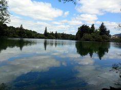 Reflection at Spring Lake