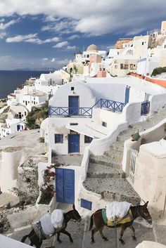 GREECE CHANNEL | Oia - Santorini by Juliano Yamakawa....this reminds me of Sisterhood of the Traveling Pants :-)