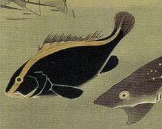 伊藤若冲 Ito Jakuchu 動植綵絵 Doshoku Sai-e 28_群魚図(鯛)-0006