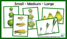 Harvest Festival math resources to download for the Foundation Phase - Early Years -  KS1 - kindergarten - Pre-School Primary Resources, Teaching Resources, Teaching Ideas, Harvest, Foundation, Role Play, Activities, Autumn, Fall