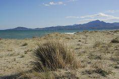 Die letzten Dünen des Roussillon   BLEU, BLANC, ROUGE