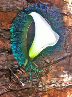 Peacock Boutonniere idea to make for the wedding