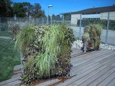 Experimental Garden, City of Strasbourg