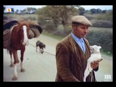 Sardegna - Il regno del silenzio 1954/62 [Parte 2/2] - YouTube