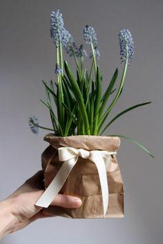 La primavera è quasi arrivata. La sento la mattina quando porto Bianca a passeggiare in campagna. Lei raccoglie i fiori e prepariamo ...