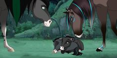 Spirit The Horse, Spirit And Rain, Spirit Animal, Most Beautiful Animals, Beautiful Horses, Horse Drawings, Animal Drawings, Horse Animation, Animation Movies