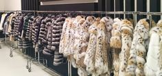 We offer a huge selection of fur garments. Check all of our points of sale at pt-furs.com/points-of-sale