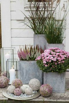 Gardening Autumn - Pixel - With the arrival of rains and falling temperatures autumn is a perfect opportunity to make new plantations Big Planters, Concrete Planters, Front Door Planters, Fall Planters, Modern Planters, Concrete Garden, Outdoor Planters, Plants For Front Door, Cheap Planters