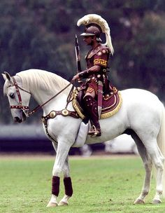 """Traveler, the noble white horse that appears at all USC home football games with a regal Trojan warrior astride, is one of the most famous college mascots. Whenever USC scores, the band plays """"Conquest"""" and Traveler gallops around the Coliseum. Traveler appears not only at Trojan home football games, but also at other Trojan events, and at local schools, charity functions and parades. Traveler has made appearances on screen, on stage, in commercials and in print as well."""