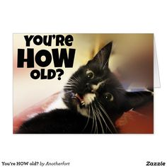 You're HOW old? Funny Birthday Card