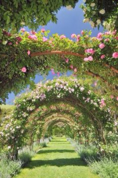 beautiful garden pathway ideas that inspire 00026 Nature Aesthetic, Spring Aesthetic, Dream Garden, Pretty Pictures, Aesthetic Pictures, Beautiful Gardens, Aesthetic Wallpapers, Beautiful Places, Scenery