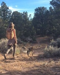 My favorite fall ritual: The perfumed piñon harvest ✨ Piñon is a seriously beloved friend and ally in New Mexico - the nuts as a wild food, the resin for medicine, and the fallen trees for the most fragrant firewood. Each resident can get a permit for only $20 which allows them to hand-harvest up to five cords of fallen trees for winter firewood. We go far into national forest and while my partner harvests firewood, I wander around gathering piñon resin for medicine making, and nuts for the…