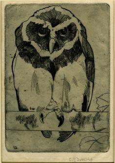 Owl. Edward Julius Detmold, 1898 (via British Museum)