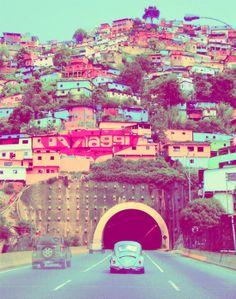 Venezuela| http://flowerfieldsgallery.blogspot.com