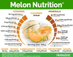 Melons have been a widely popular fruit since their discovery, and still remain prominent today because of their taste and nutritional value. Melon Benefits, Cantaloupe Benefits, Coconut Health Benefits, Healthy Diet Tips, Health Diet, Health And Nutrition, Nutrition Articles, Gastronomia, Diet And Nutrition