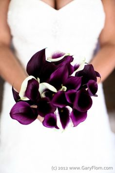 purple lupine and cala lilly bouquet | Bridal Bouquet, Purple & Casablanc Calla Lilies. Florist: Greens ...