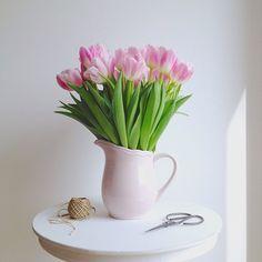 Easter beauties... - @marina_in_wonderland-