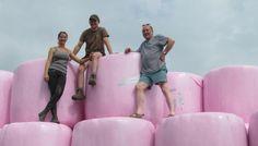 À Wandignies-Hamage, des balles de foin roses pour combattre le cancer du sein