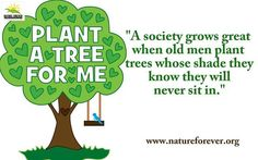 Planting trees is and taking them is as important to Nation building as is making roads, airports, power plants and other infrastructure.