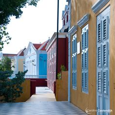689. Mi Tera (My Land) by Philip A. Rademaker | 1000 Awesome Things About Curaçao