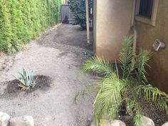 These companies can do excellent work on both landscaping and the maintenance of your plants. They have a broad range of knowledge in these areas and have done much work in the area. Visit us here.http://sbevolutionlandscape.com/