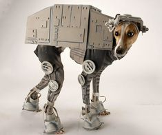 Make your dog look like a Star Wars AT-AT with this geeky and highly detailed dog costume. This concept dog costume will make all the other pooches in the neighborhood jealous this Halloween. Best Dog Costumes, Pet Halloween Costumes, Animal Costumes, Pet Costumes, Dog Halloween, Halloween 2013, Costume Ideas, Halloween Party, Funny Dogs