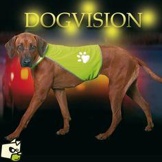 VESTE pour chien DOG VISION de 8e à 11e