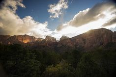 Zion National Park  - top wedding destinations -  where to get married