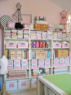 Can't stand all the baby pink, but for this I could use tall bookshelves from Walmart.