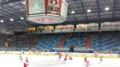 Zimní stadion Hradec Králové ve městě Hradec Králové, Královéhradecký