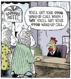 The Rooster takes no requests for wake up calls | #rooster #webcomic #comedy | Much funny. Very humor. Speed Bump on Alphacomedy.com