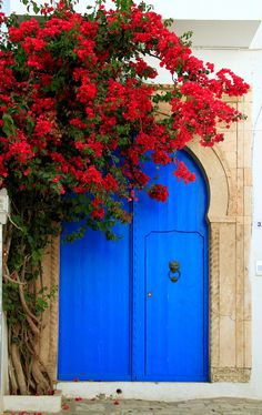 Sidi Bou Said, Tunisia. The architecture of this city is inspired by Arabic and Andalusian. It occupies a cliff over the Mediterranean Sea, between the Gulf of Tunis and the Carthage area. Cool Doors, Unique Doors, Beautiful Flowers, Beautiful Places, Red Flowers, Sidi Bou Said, Doorway, Windows And Doors, Photos