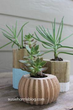 Wooden Flower Pot DIY: Susie Harris