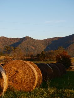 Hay Stacks - by A.Clark Hay Bales - great shot!  We used to play on top of the haystacks in the field behind our house growing up!