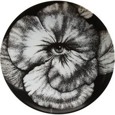 "Plate 92 from Piero Fornasetti's ""Theme and Variations"" series"