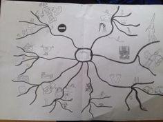 Usage de la carte mentale en maternelle