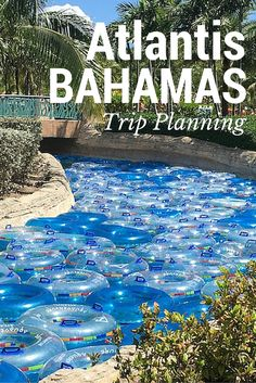 Plan the perfect Atlantis family getaway. Tips for saving on hotels and getting the most out of your trip to the Bahamas. For families who love to travel.