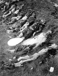 Schwarzenfeld, Germany, Victims who were shot to death. - Yad Vashem Photo Archive