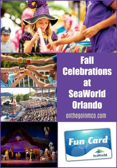 On the Go in MCO - A lifestyle and informational blog about all that central Florida has to offer! Enjoy our unique perspectives and news about the Orlando area attractions and resorts.
