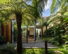 A Victorian townhouse and a verdant, exotic garden of tree ferns and tropical palms: the question was how to connect these two potentially discordant spaces sensitively, while ensuring a bold visual