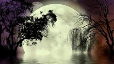 Illustration about A fantasy background with the moon and trees, including a weeping willow, reflecting in thewater. Illustration of fractal, large, dream - 5321705 Bedtime Music, Moon Fairy, Fantasy Background, Digital Art Photography, Weeping Willow, Old Trees, Moon Lovers, Relaxing Music, Fractals