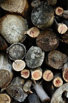Wood for the fire