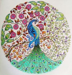 secret garden adult coloring peacock - Google Search