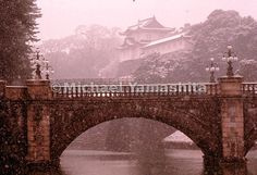 Snow falls on the Nijubashi bridge of the Imperial Palace in Tokyo, Japan. Snow Falls, Imperial Palace, Tokyo Japan, Brooklyn Bridge, To Go, Louvre, Building, Places, Travel