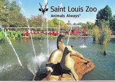 St. Louis Zoo, Missouri